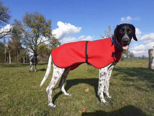 QUICK DRYING COAT for dogs