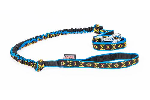 LEASH with ABSORBER