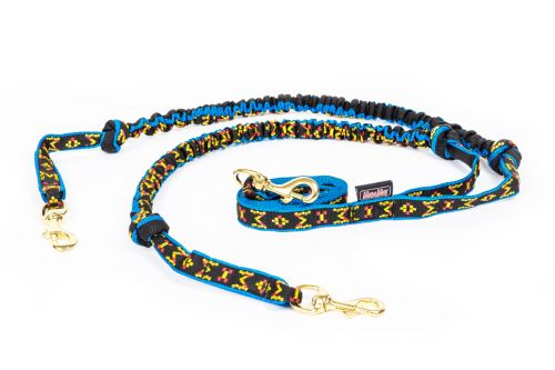 SNAP line with BUNGEE for 2 dogs