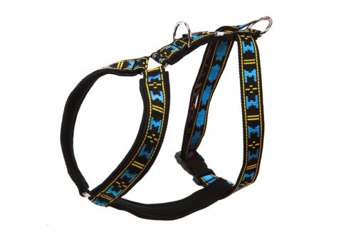 GUARD harness