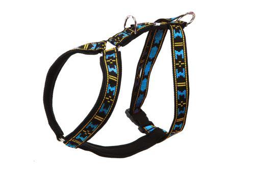 GUARD harness