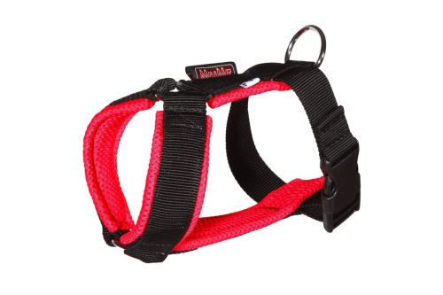 CHICCO harness